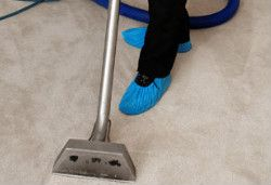 Carpet Cleaning Palmers Green