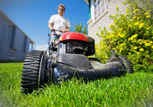 grass-cutting-palmers-green
